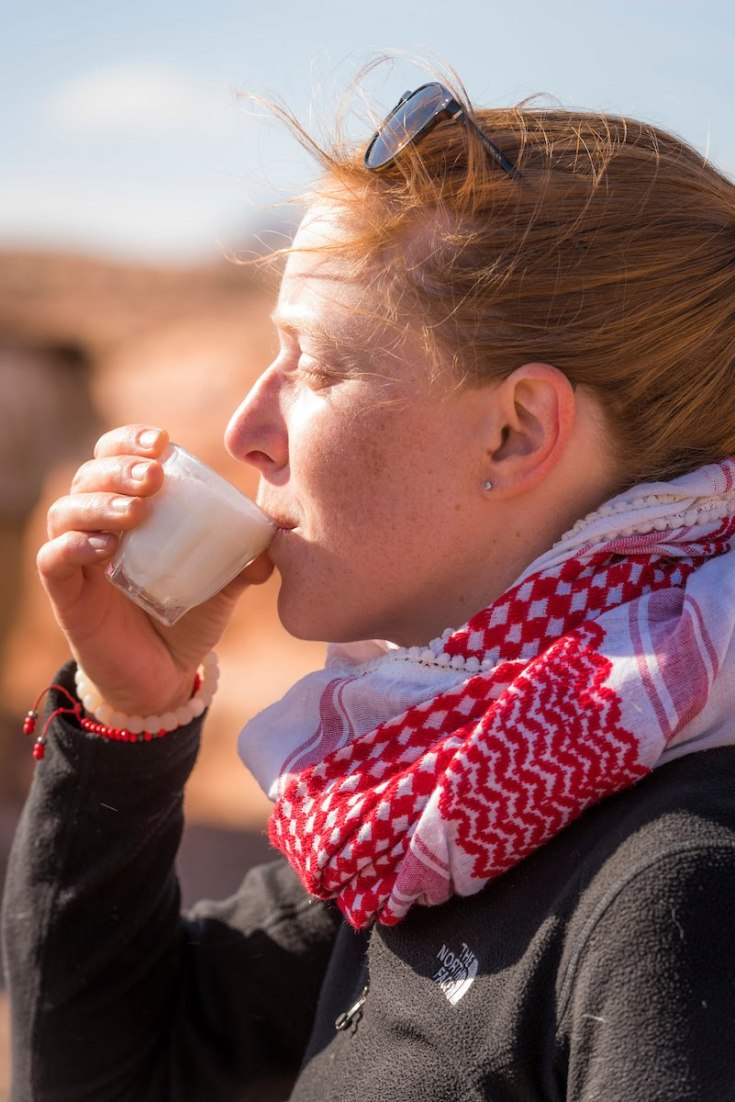 Sinai-Trail-Egypt-235.jpg